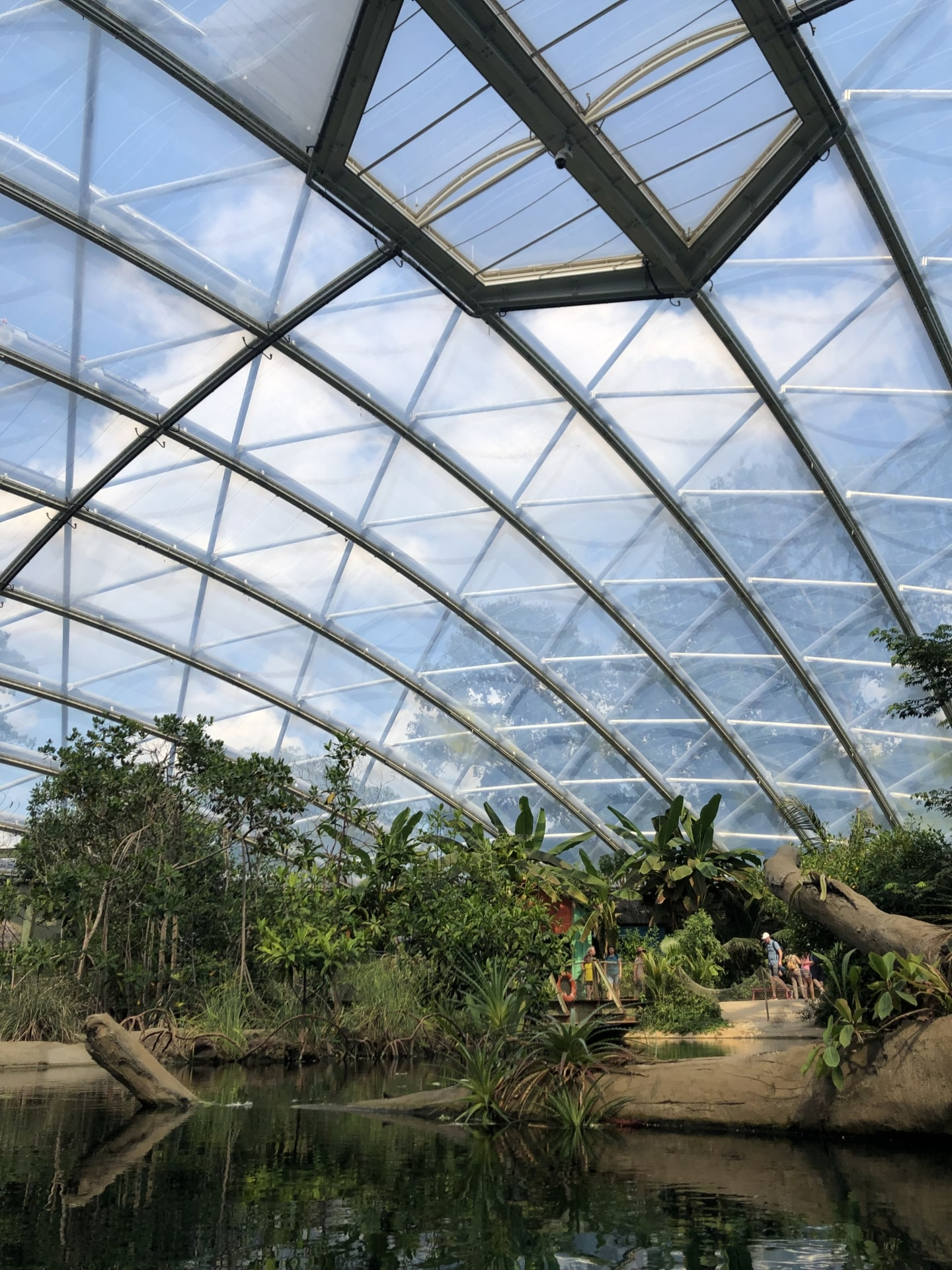 The newest upgrade is a testament to the Texlon® ETFE systems' positive results and durability.