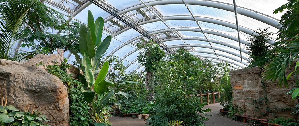 Die reiche Artenvielfalt dieses Gebäudes der Zoom Erlebniswelt wird durch das Texlon® ETFE-Dach mit seiner unglaublichen Lichtdurchlässigkeit unterstützt.