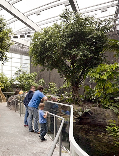 Unser Texlon® ETFE-System schafft einen lichtdurchfluteten Bereich im Nationalaquarium in Kopenhagen, Dänemark, Den Blå Planet.